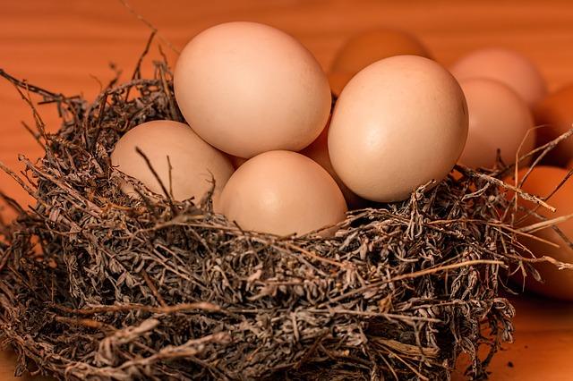 2パック全部が二卵黄!卵がけご飯が食べられないドイツで意外な幸せ
