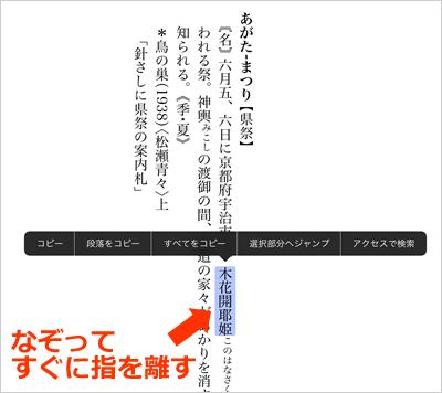 170126_kokugo_daijiten02